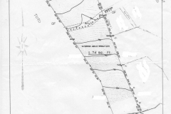topographical plan