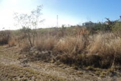 flat land next to access road