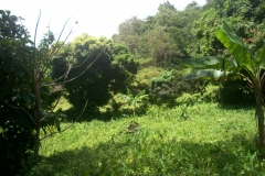 Land in La Plaine
