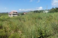 view from land